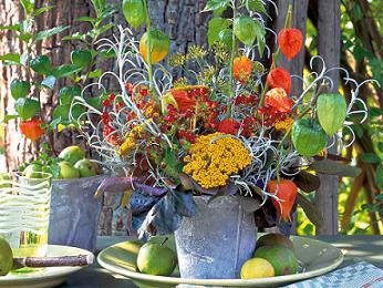 календарь работ в цветнике, на ягоднике, в винограднике на октябрь