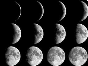 лунный садово-огородный календарь